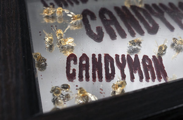 Candyman Candyman...